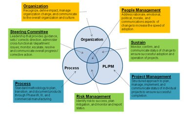 Organization Process and PL/PM integration